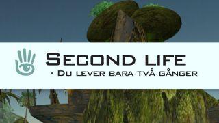 Second life – Du lever bara två gånger