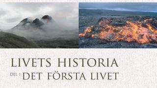 Livets Historia: Det första livet