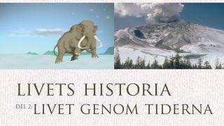 Livets historia: Livet genom tiderna