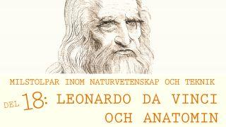 Milstolpar Del 18: Leonardo da Vinci och anatomin