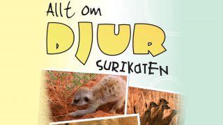 Allt om djur: Surikaten