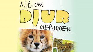 Allt om djur: Geparden