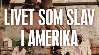 Livet som slav i Amerika
