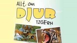 Allt om djur – Tigern