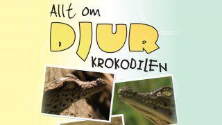 Allt om djur – Krokodilen