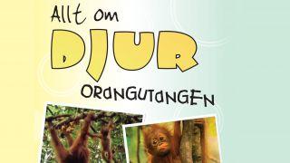 Allt om djur: Orangutangen