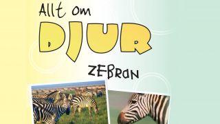 Allt om djur: Zebran
