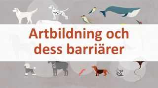 Artbildning och dess barriärer