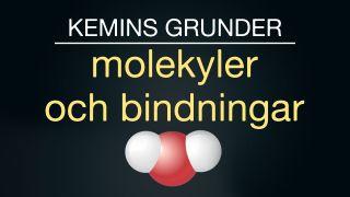 Kemins grunder: Molekyler och bindningar