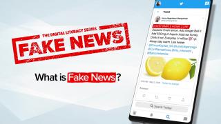 Vad är falska nyheter?