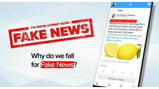 Why Do We Fall for Fake News?