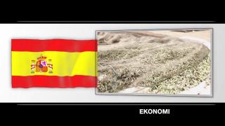 Spanien: Ekonomi