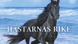 Hästarnas rike – en berättelse om framgång