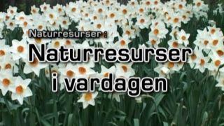 Naturresurser: Naturresurser i vardagen
