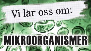 Vi lär oss om: Mikroorganismer