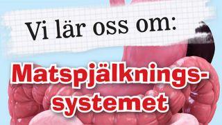Vi lär oss om: Matspjälkningssystemet
