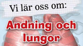 Vi lär oss om: Andning och lungor