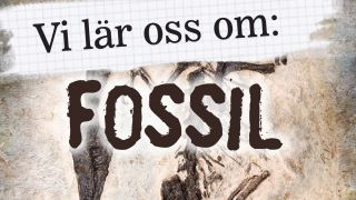 Vi lär oss om: Fossil