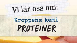 Vi lär oss om: Kroppens kemi - proteiner
