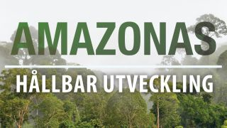 Amazonas: Hållbar utveckling