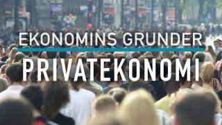 Ekonomins grunder: Privatekonomi
