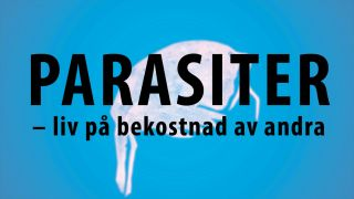 Parasiter - liv på bekostnad av andra
